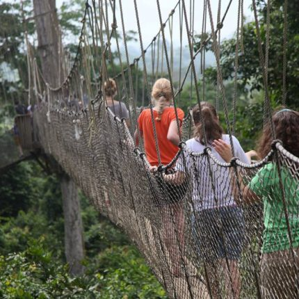 Kakum National Park Tour by Grassroot Tours