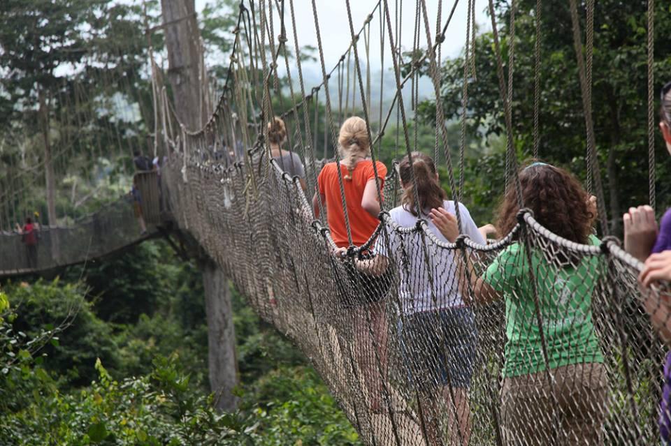 Kakum National Park Tour by Grassroot Tours