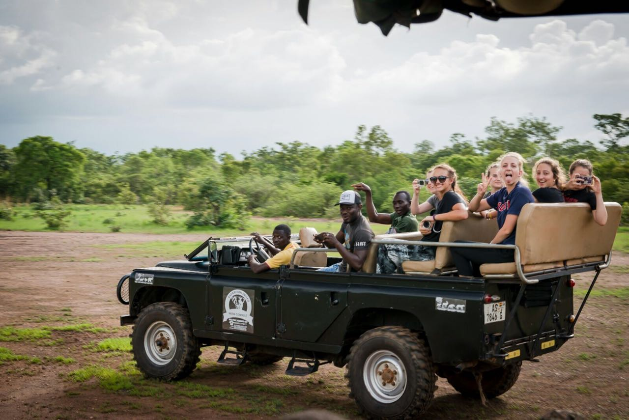 Safari Culture Tour Mole National Park
